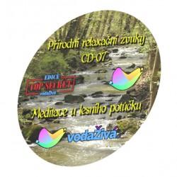 Meditace u lesního potůčku - CD-07 - Přírodní relaxační zvuky